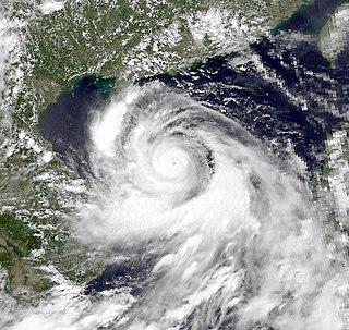 Typhoon Dot (1989) Pacific typhoon in 1989