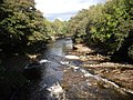 Downstream River Lossie - geograph.org.uk - 1528563.jpg