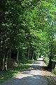 Drive to Sodington Hall, Mamble - geograph.org.uk - 460955.jpg