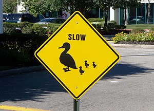 duck crossing road sign yellow warning reflection balance poise psychology