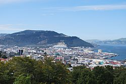 Dunedin from Lookout 003.JPG