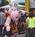 Duracell Bunny Crop Sharp.jpg