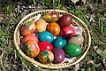 Easter Eggs And The Spring Grass (6695487).jpeg
