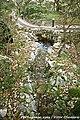 Ecoparque Sensorial da Pia do Urso - Portugal (6957710332).jpg