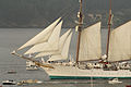 El buque escuela Juan Sebastián Elcano partiendo de la Bahía de Bayona 04.jpg