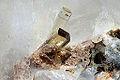 Elbaite, quartz, muscovite 1100.1.FS2014.jpg