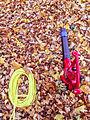 Electric Leaf Blower - Vacuum (23469960661).jpg