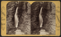 Entrance gorge, by Purviance, W. T. (William T.).png