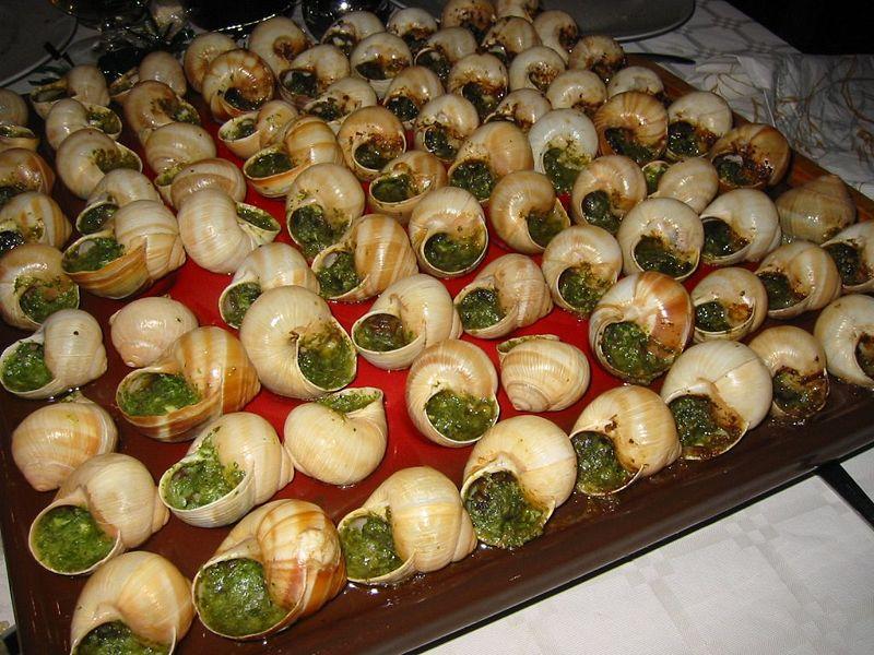 Escargot de Bourgogne 02.jpg