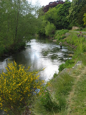 River Esk, Lothian - Image: Esk fishing
