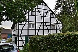 Düschenhofer Wald in Essen