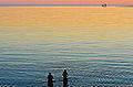 Evening Dip (9468262358).jpg