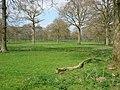 Evocative pasture - geograph.org.uk - 394612.jpg
