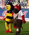 FC Red Bull Salzburg gegen SV Ried 36.JPG