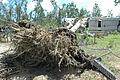 FEMA - 13892 - Photograph by Mark Wolfe taken on 07-13-2005 in Alabama.jpg