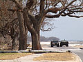 FEMA - 15963 - Photograph by John Fleck taken on 09-22-2005 in Mississippi.jpg