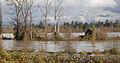 FEMA - 26904 - Photograph by Marvin Nauman taken on 11-08-2006 in Washington.jpg