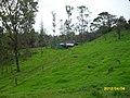 FINCA EN VILLA HERMOSA - panoramio.jpg
