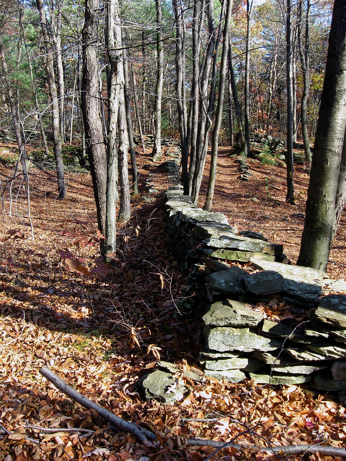 Kingston Township Luzerne County Pennsylvania