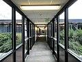 Faculty Office Building hallway (30016016168).jpg