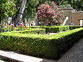 Fale - Spain - Granada - 91.jpg
