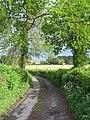 Farm Lane near Landfordwood - geograph.org.uk - 432396.jpg