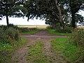 Farm track in the Balcaskie House estate - geograph.org.uk - 1450876.jpg