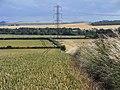 Farmland, Bishops Cannings - geograph.org.uk - 1564973.jpg