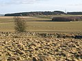 Farmland, Torney's Fell (2) - geograph.org.uk - 1138697.jpg