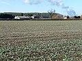 Farmland near Gate Burton (2) - geograph.org.uk - 1738630.jpg