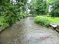 Fast stream through Blarney Castle Grounds - panoramio.jpg