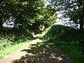 Field access track near Brimaston - geograph.org.uk - 2545709.jpg