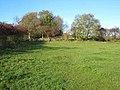 Field between Summerhill and Dalton Piercy - geograph.org.uk - 279178.jpg