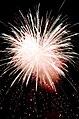 Fireworks 20100724- DSC9018 (4832572568).jpg