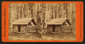 First log hut erected in the grove, Mariposa Grove, by E. & H.T. Anthony (Firm) 2.png