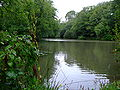Fish Pond near Titchfield Abbey.jpg