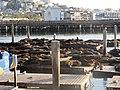 Fisherman's Wharf, San Francisco, CA, USA - panoramio (53).jpg