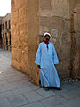 Flickr - archer10 (Dennis) - Egypt-3A-048.jpg