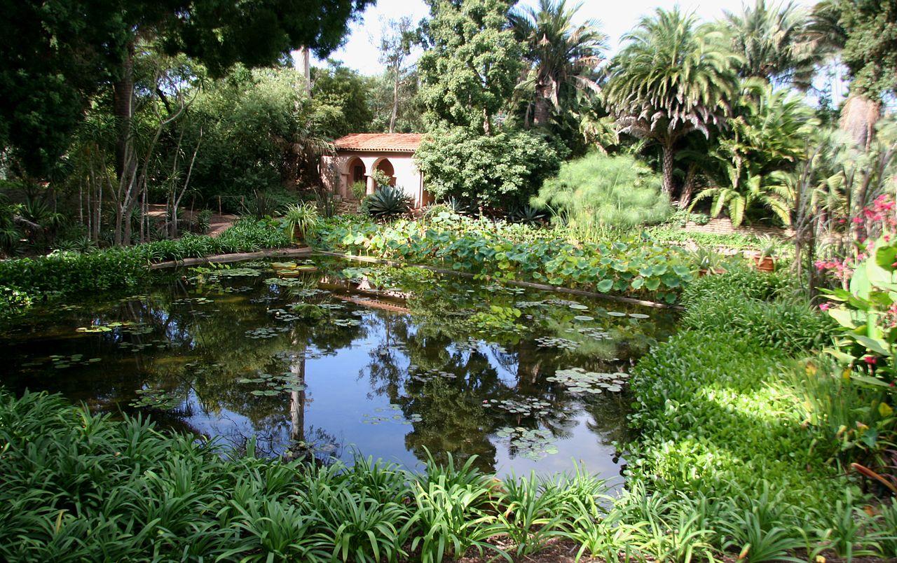 Japanese Garden Ideas Diy Backyards