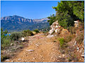 Flickr - ronsaunders47 - Coastal Path -Thassos Greece..jpg