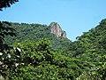 Floresta tijuca pico tijuca mirim.jpg
