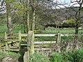 Footpath, Hopton, Mirfield - geograph.org.uk - 765184.jpg