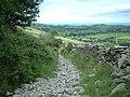 Footpath above Glen Mona - geograph.org.uk - 475139.jpg