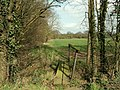 Footpath to East Hanningfield from Southend Road - geograph.org.uk - 751129.jpg