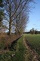 Footpath to Woolpit Heath - geograph.org.uk - 1596211.jpg