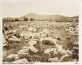 Fotografi från tempelruin i Grekland - Hallwylska museet - 104620.tif