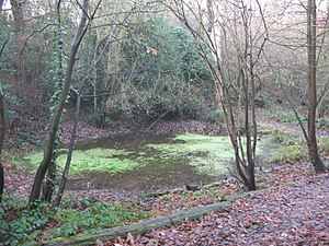 Abbey Wood - Image: Fountain Pond geograph.org.uk 1074319