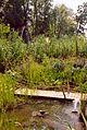 France Loir-et-Cher Festival jardins Chaumont-sur-Loire 2003 Ile des herbes 02.jpg