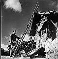 Francisco Narváez (1943).jpg