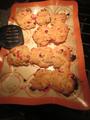 Fresh cranberry scones 01.png